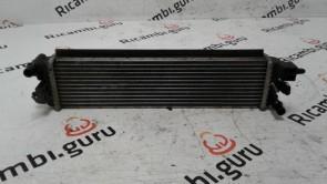 Radiatore Acqua Peugeot 508